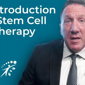 An Introduction To Stem Cell Therapy And Regenerative Medicine