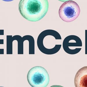 Knee osteoarthritis treatment using stem cells at EmCell clinic