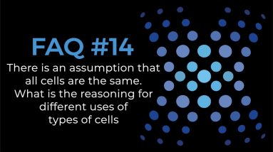 What Is The Reasoning For Different Uses Of Types Of Stem Cells