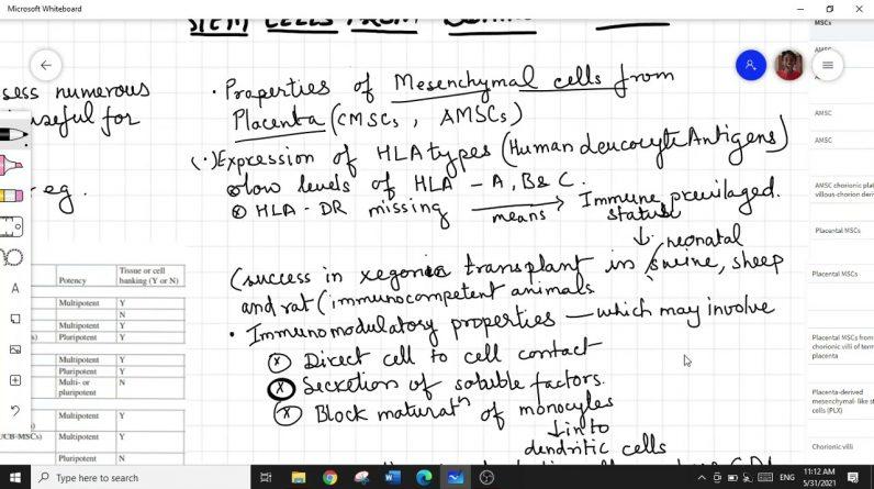 SOURCES OF STEM CELLS FOR REGENERATIVE MEDICINE-2