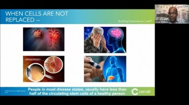 Stem Cells in Regenerative Medicine: Make Your Own